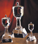 Optical Crystal Trophy Cup