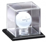 GOLF BALL CASE